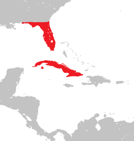 File:Location of Cuba (Revolution of 95').png