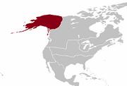 QI 1890 Alyeska
