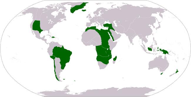 Brazilian Allies NAV