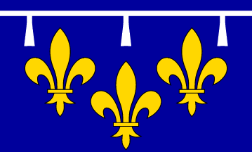 File:Orleansflag.png