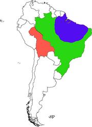 Brazil civil war 4