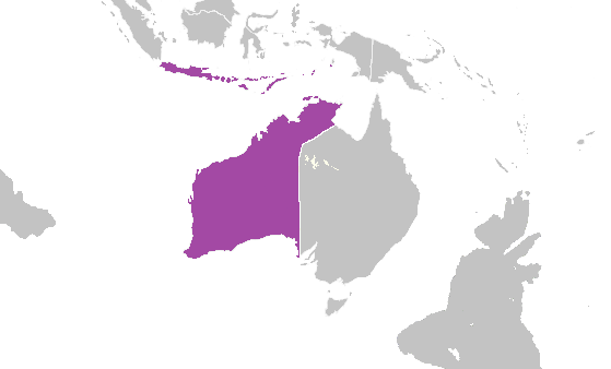 File:West Australia, 1997 (Alternity).png