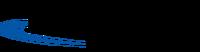 TSSwanstone logo