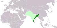 Azad Hind (Mughal Glory)