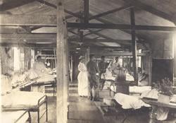 File:UoR Hospital W Lovegrove.jpg