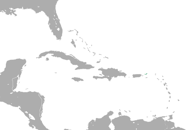 File:CNA virgin islands.png