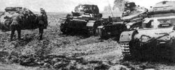 Destroyed Pz.Kpfw. IIs near Hořovice (WFAC)