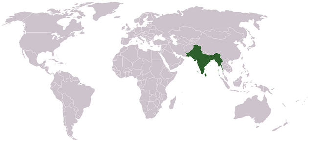 File:India.png.png