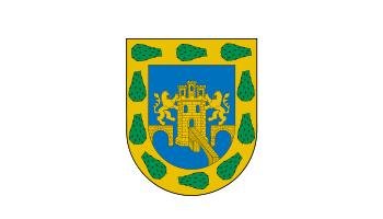File:Bandera df.png