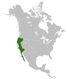 SV-KaliforniaMap