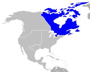 Northamerica map highlight canada