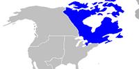 Dominion of Canada (American Commonwealth)