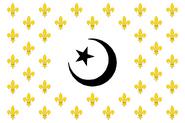 Flag 567