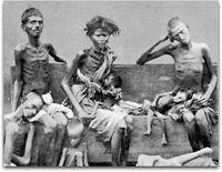 Famine Family