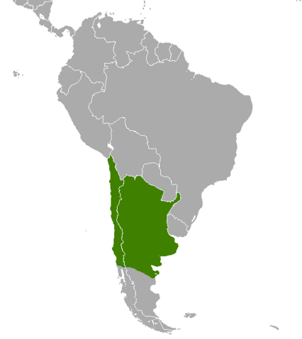 File:Argentina.png