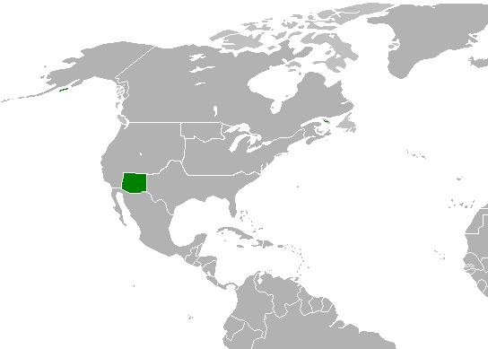 File:New texas.png