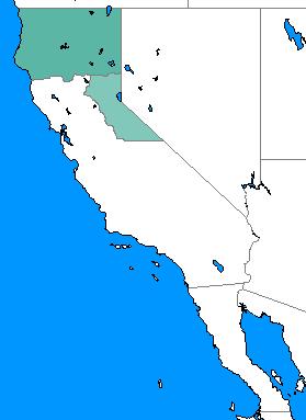 File:NotLAH California 1984.png