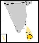 Kotte 1656