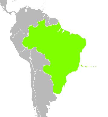 File:Brazil 1997 (Alternity).png