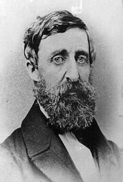 essay on the night thoreau spent in jail night thoreau spent in jail questions 1 the play was written a while back so now in modern time the perspective is different than it would of been when it was first written.