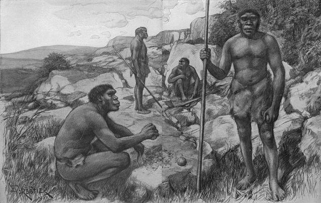 File:Rhodesians.jpg