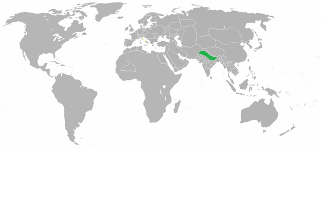 File:Dawn of a new world 1490.png