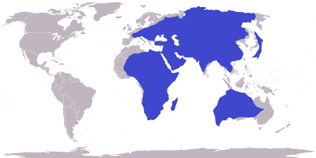 File:No America World Map Superimposed over OTL World Map 1.png