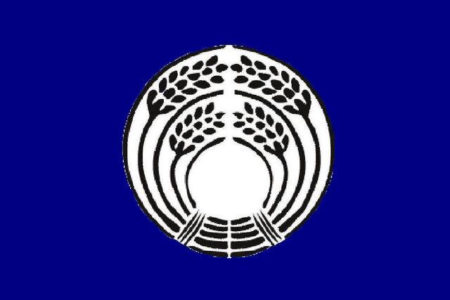 File:Flag-of-Republic.jpg