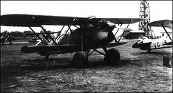Fall Grün Hungary Air Force