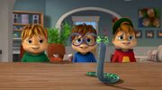The Chipmunks and their Snake
