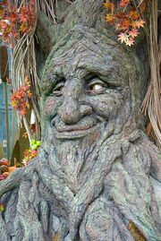 Talking Tree at Bellagio