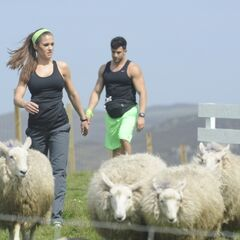 Brooke &amp; Robbie herding sheep in <a href=