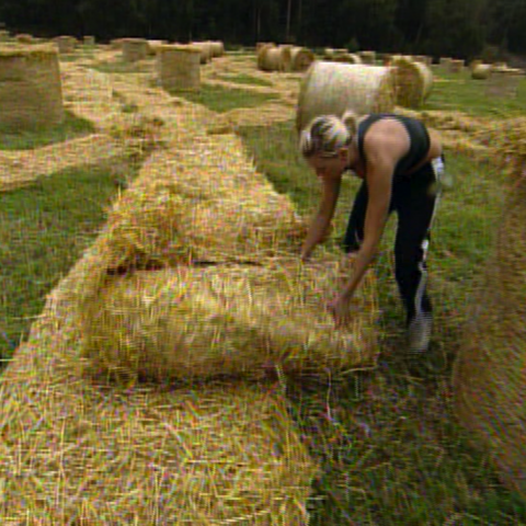 Lena struggling to find a clue hidden in bales of hay.