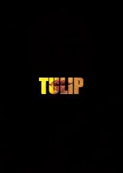 File:Tulip - Portal1.png