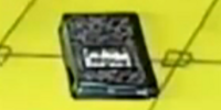 Amelia's Notebook (object)