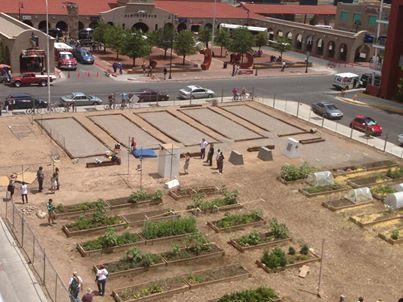 File:Terrain albuquerque alvarado urban farm.jpg