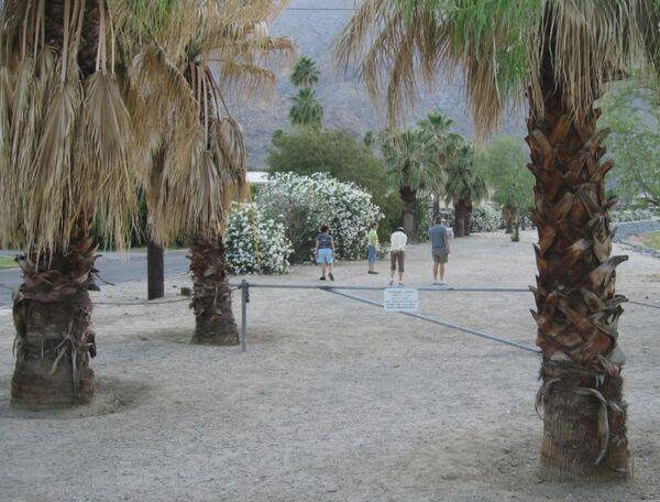 Terrain palm springs creekside
