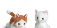 Rebecca's Kittens