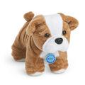Meatloaf dog.jpg