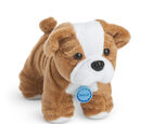 Meatloaf (dog)