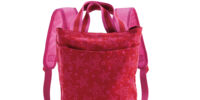 Backpack Carrier