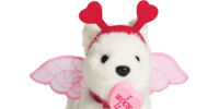 My Furry Valentine Set
