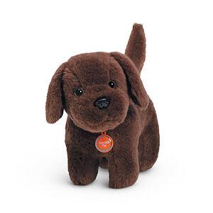 ChocolateChip dog
