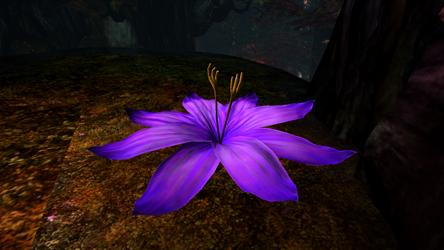File:Shrinking Violet.png