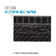 Cutting Crew (I Just) Died In Your Arms cover