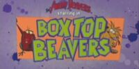 Box Top Beavers