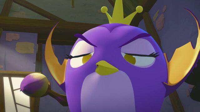 File:The Portrait - Angry Birds Stella - ToonsTV.mp4 000136245.jpg