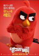 TheAngryBirdsMovieRedBirdKoreanPoster