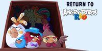 Return to Angry Birds Rio