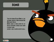 Bomb Toy Care
